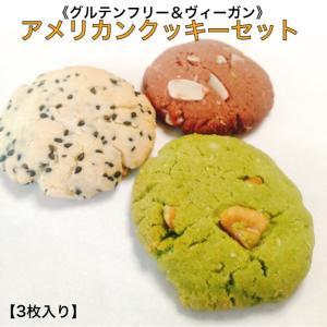 グルテンフリー アメリカンクッキーセット【4枚入り】 砂糖不使用 卵不使用 米粉クッキー 自然栽培米...