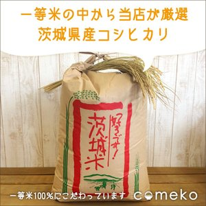 コシヒカリ玄米 30kg 29年産 茨城県産...
