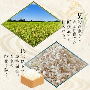 お米 29年産 5キロ 北海道産 ゆめぴりか 5kg 米 ごはん うるち米 精白米|komenokura|05