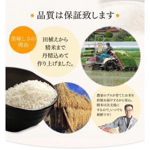 セール お米 29年産 お米 5キロ×2 宮城県産 ササニシキ ささにしき 10kg (5kg×2) 米 ごはん うるち米 精白米|komenokura|04