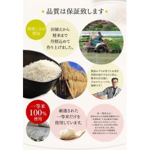 お米 29年 5キロ×2袋 宮城県産 つや姫 10kg (5kg×2) 米 ごはん うるち米 精白米|komenokura|05