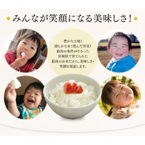 お米 29年 5キロ 宮城県産 つや姫 5kg 米 ごはん うるち米 精白米|komenokura|05