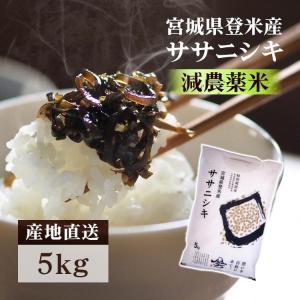 28年産 宮城県産 ササニシキ 減農薬米 5kg 米 お米...