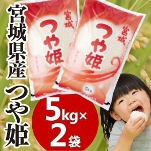 28年産 宮城県産 つや姫 5kg×2 10kg