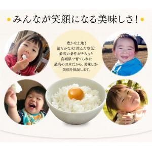 お米 30kg 玄米 29年 宮城県産 ひとめぼれ 米 ごはん|komenokura|05