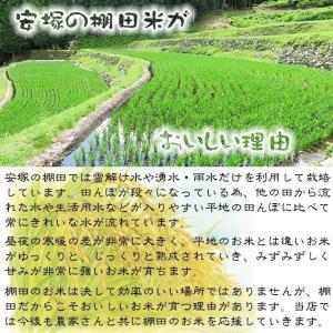 お米<送料無料>新潟県安塚産棚田米コシヒカリ ...の詳細画像5