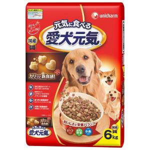 愛犬元気 ビーフ・緑黄色野菜・小魚入り 6kg|komeri