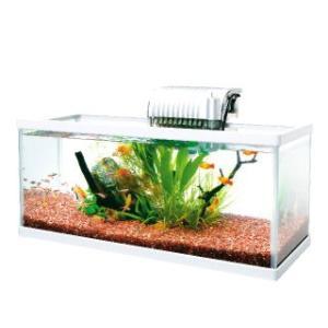 白い上下フレームの明るくスタイリッシュな薄型ガラス水槽セット。