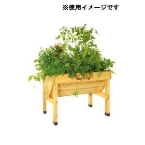 ベランダで野菜を収穫してみよう!