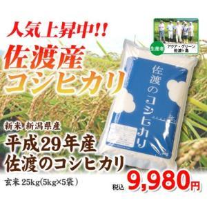 平成29年度産 佐渡のコシヒカリ 玄米25kg(5kg×5) 【新潟県佐渡市産】|komeri