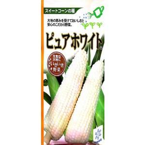 ピュアホワイト(白色粒)【種】30ml