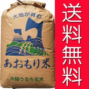 【29年産】玄米 30kg 青森 青天の霹靂(へきれき)...