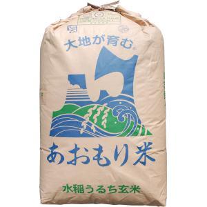【28年産】玄米 5kg 青森 青天の霹靂(へきれき)