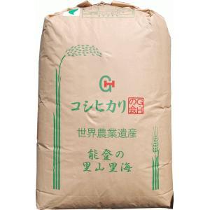 【29年産】玄米 20kg エコ米 石川 コシヒカリ