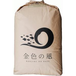 【29年産】玄米 5kg 特別栽培米 岩手 金色の風...