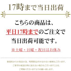 お米5kg  産地直送!新潟県産 コシヒカリ 5kg 送料無料 (一部地域を除く) 平成29年産|komeya|03