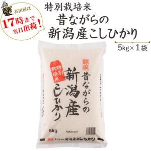 お米 5kg  特別栽培米 昔ながらの新潟産こしひかり5kg×1袋 30年産 送料無料(一部地域を除く)|komeya