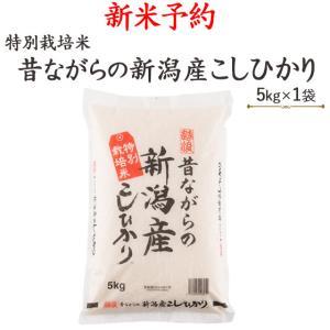 お米5kg 平成29年産新米予約安心・安全〔特別栽培米〕昔な...
