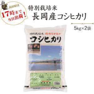 お米 10kg 特別栽培米 長岡産コシヒカリ 5kg×2  30年産 送料無料(一部地域を除く)|komeya