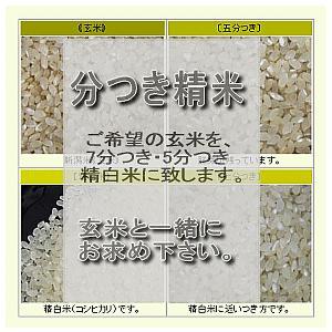 分つき精米(25kgマデ)|komeya