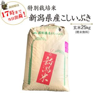 当日出荷  お米25kg 特別栽培米新潟産こしいぶき玄米 25kg/白米4.5kg×5  令和元年産 送料無料(一部地域を除く)