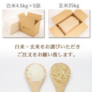 お米25kg 特別栽培米新潟産こしいぶき玄米 25kg/白米4.5kg×5 30年産 送料無料(一部地域を除く) うるち米|komeya|08