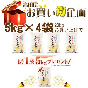 お米 5kg 特別栽培米 新潟県産こしいぶき5kg 29年産 送料無料(一部地域を除く) komeya 02