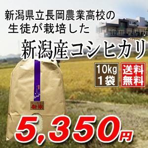 【平成30年産】新潟県立長岡農業高校の生徒が栽培したコシヒカリ10kg×1袋※|komeya