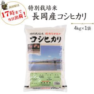 お米 4kg 特別栽培米 長岡産コシヒカリ4kg 30年産 送料無料(一部地域を除く)|komeya