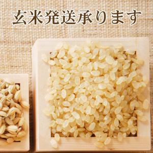 お米 10kg 特別栽培米 新潟産ミルキークイーン5kg×2 平成30年産 送料無料(一部地域を除く)|komeya|03