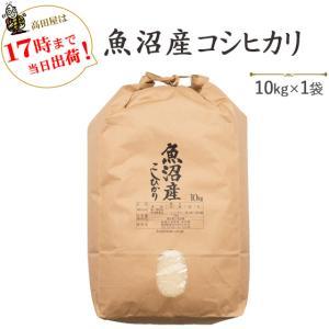 米 10kg 白米 魚沼産コシヒカリ10kg 29年産 送料無料(一部地域を除く) うるち米|komeya