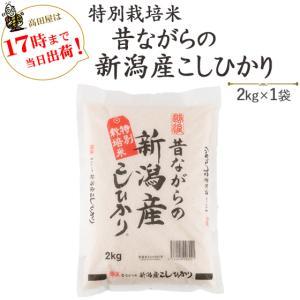 お米 2kg 特別栽培米昔ながらの新潟産こしひかり2kg×1袋 30年産 送料無料(一部地域を除く)|komeya