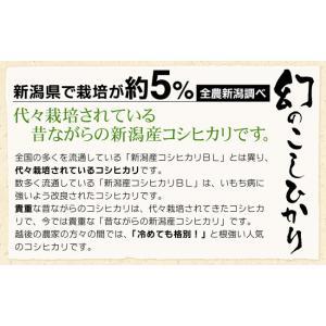 お米 2kg 特別栽培米昔ながらの新潟産こしひかり2kg×1袋 29年産 送料無料(一部地域を除く)|komeya|02