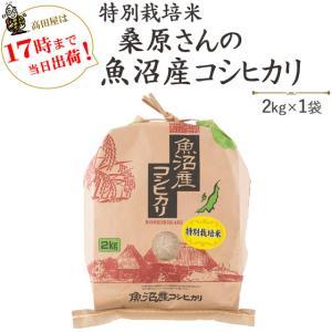 お米 2kg 安心・安全特別栽培米桑原さんの魚沼産コシヒカリ2kg×1袋 29年産 送料無料(一部地域を除く)|komeya