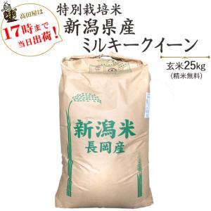 お米 25kg 特別栽培米新潟産ミルキークイーン玄米25kg(精米無料)白米4.5kg×5袋 29年産 送料無料(一部地域を除く)|komeya