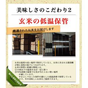 米 お米 平成30年産 福島県中通り産コシヒカリ白米10kg(5kg×2個) 送料無料 ※一部地域を除く|komeyamayoshi|04
