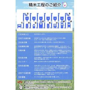 米 お米 平成30年産 福島県中通り産 天のつぶ 白米:10kg(5kg×2個)  送料無料 ※一部地域を除く|komeyamayoshi|06