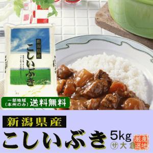 新潟県産こしいぶき(令和2年産)5kg【送料無料(本州のみ)】 komeyaookura