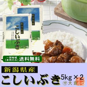 新潟県産こしいぶき(令和2年産)10kg(5kg×2袋) 【送料無料(本州のみ)】 komeyaookura