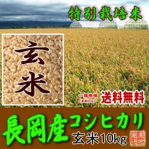 【特別栽培米】 新潟県産コシヒカリ(長岡地区限定)(平成28年)玄米 10kg(5kg×2) 【送料無料(本州のみ)】