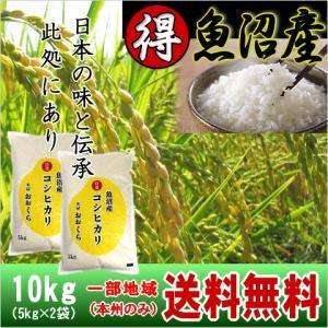 魚沼産コシヒカリ (特選) 10kg(5kg×2袋)(令和2年産)【送料無料(本州のみ)】cp komeyaookura