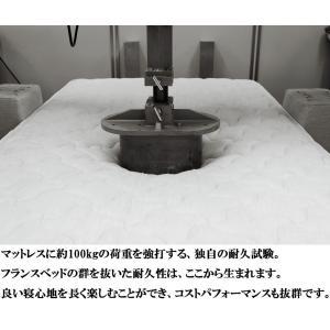 フランスベッド アニバーサリー70C-ZT-PWプレミア 引き出し付き セミダブルベッド(フレーム+マットレス)/70周年 プロウォール スノコ 収納 日本製 DR|komichi-2018|09