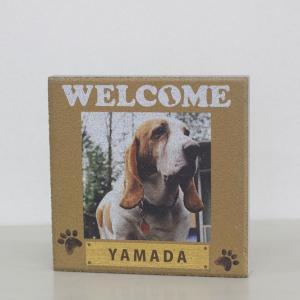 【ペット写真入り表札】平板ブロック ウェルカムペットK 〈商品番号 H200-P11〉|komochi-store
