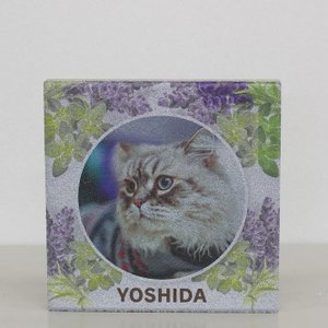 【ペット写真入り表札】平板ブロック ウェルカムペットN 〈商品番号 H300-P14〉|komochi-store
