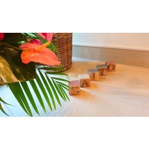 【ガーデンサイン】ピンロック アルファベット 5個セット 〈商品番号 P-A5〉|komochi-store