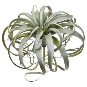 多肉植物 フェイクグリーン キセログラフィカ〔×2本入り〕インテリア