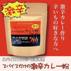 スパイスだけの激辛カレー粉 食品添加物・小麦粉不使用、自然のスパイスだけを使用した本格激辛スパイスカレーパウダーです。|komorebi