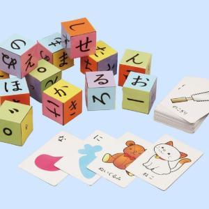 おもちゃ 玩具 オモチャ あそんでまなべる ひらがなセット ひらがな 文字 覚える 学習 知育 学べる 子供 簡単 ことば 言葉 遊んで学べる アーテック  2599 konan