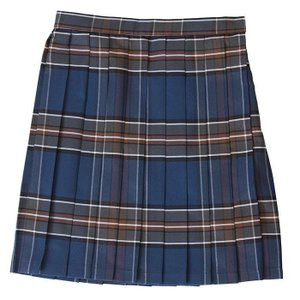 TEENS EVER 17SS チェック プリーツスカート クラシックネイビーxブラウン スクールスカート 制服スカート 女子 スカート 学生 スクール|konan