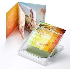 歌詞カードなどに最適なインデックスカード 薄手でお手軽なつやなしマットタイプ 2つ折りインデックスカード(薄手 つやなしマット) サンワサプライ JP-IND8N|konan
